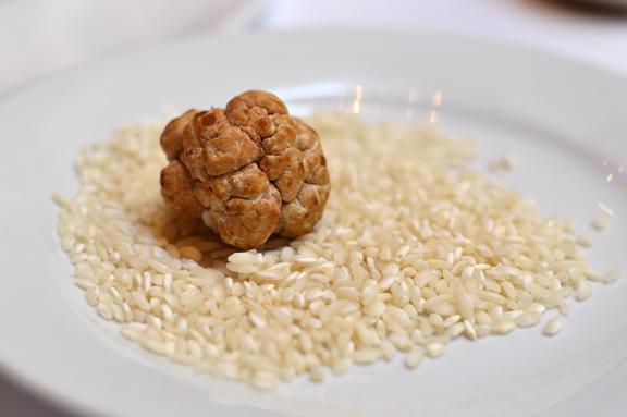 bianchetto truffles marche italy